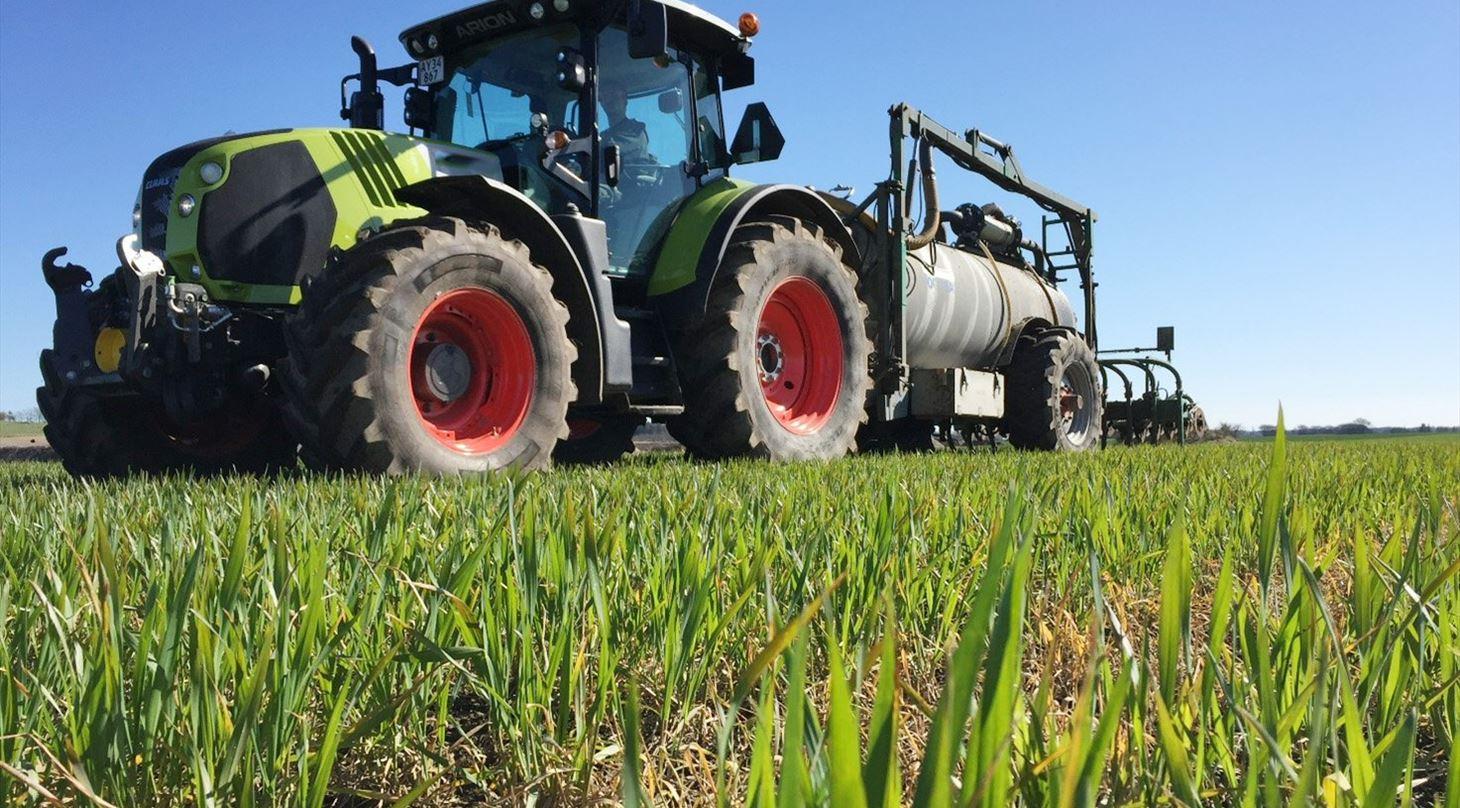 Field trials - organic and inorganic fertilizer - Services